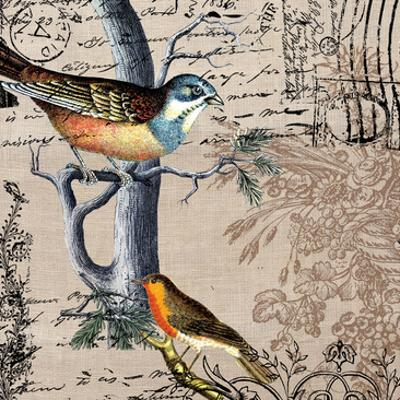 Postcard Birds 1 by Elizabeth Jordan