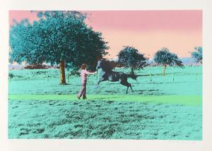 Flying Horse by Elizabeth Lennard