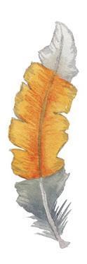 Bohem Feather I by Elizabeth Medley
