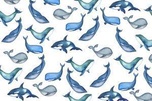 Whales by Elizabeth Rider
