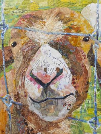 Pokey Goat by Elizabeth St. Hilaire