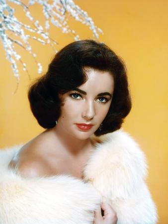 https://imgc.allpostersimages.com/img/posters/elizabeth-taylor-1953-photo_u-L-Q1C3EQT0.jpg?artPerspective=n