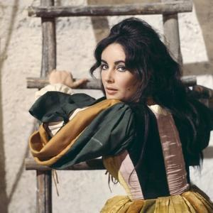 Elizabeth Taylor in 'The Taming of the Shrew' (photo)