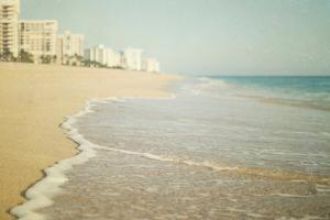 Flordia Seashore by Elizabeth Urqhurt