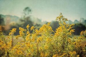 Blissful Country IV Crop by Elizabeth Urquhart