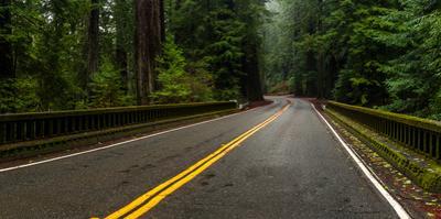 Elk Creek Bridge on Avenue of the Giants passing through a redwood forest, Humboldt Redwoods Sta...