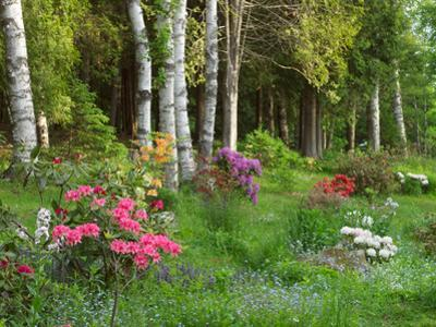 Scenic of Forest and Garden, Canada by Ellen Anon