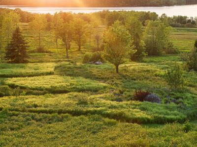 Sunset over a Meadow, New Brunswick, Canada by Ellen Anon