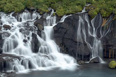 Iceland, Hraunfossar. Tiny cascades emerge from the lava to flow into the Hvita River