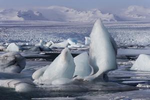 Iceland, Skaftafell National Park, Jokulsarlon lagoon. Ice from Vatnajokull Glacier on a lagoon. by Ellen Goff