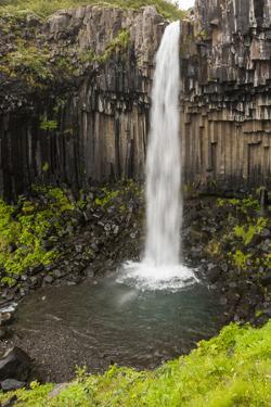Iceland, Skaftafell National Park, Svartifoss, Black Falls. by Ellen Goff