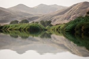 Namibia, Kaokoveld Conservation Area, Kunene River. Greenery along the banks of the Kunene River. by Ellen Goff