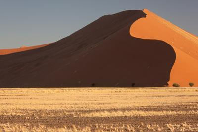 Namibia, Namib-Naukluft National Park, Sossusvlei. Evening light on the red dunes. by Ellen Goff