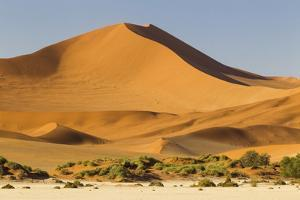 Namibia, Namib-Naukluft National Park, Sossusvlei. Large red dune rising from a while pan. by Ellen Goff