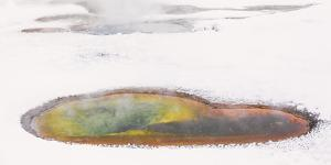 Wyoming, Yellowstone NP, Upper Geyser Basin. Colorful thermal pool particularly vivid in the snow. by Ellen Goff