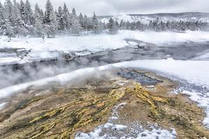 Wyoming, Yellowstone NP, Upper Geyser Basin, Heart Spring. by Ellen Goff