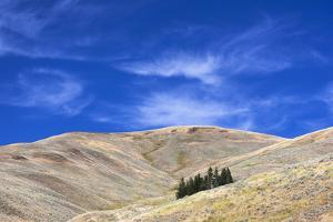 Yellowstone National Park, Lamar Valley. Beautiful clouds dot the sky above the valley. by Ellen Goff