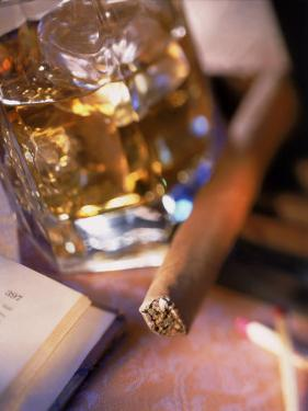 Cigar and Liquor with Ice Cubes by Ellen Kamp