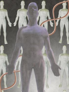 Cloning Dna, Male Figure with Dna Strand by Ellen Kamp
