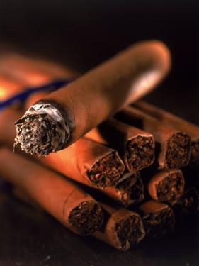 Lit Cigar on Top of Bundle of Cigars by Ellen Kamp