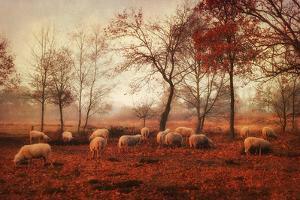 Last Days of Autumn by Ellen van Deelen