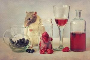 Snoozy Loves to Eat by Ellen Van Deelen