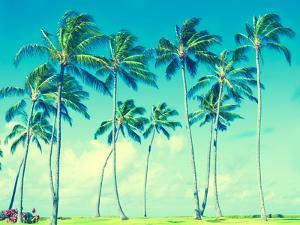 Coconut Palm Trees in Hawaii (Vintage Style) by EllenSmile