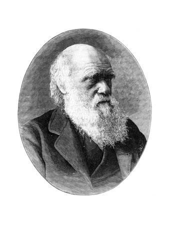 Charles Darwin, 19th Century English Naturalist