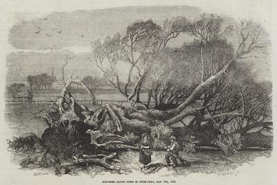 https://imgc.allpostersimages.com/img/posters/elm-tree-blown-down-in-hyde-park-7-may-1856_u-L-PVWEVV0.jpg?artPerspective=n
