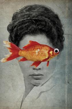 Fish Eye by Elo Marc