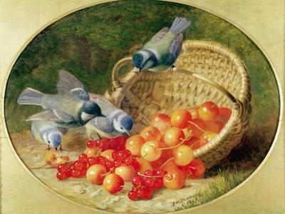 Bluetits Pecking at Cherries, 1897