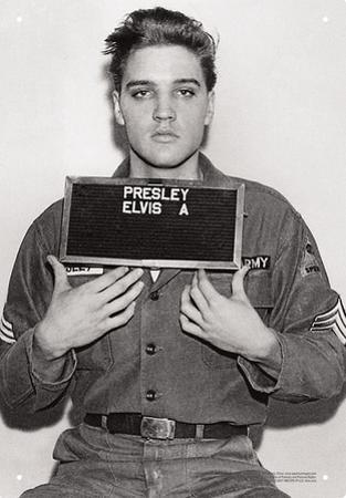 Elvis - Enlistment Photo