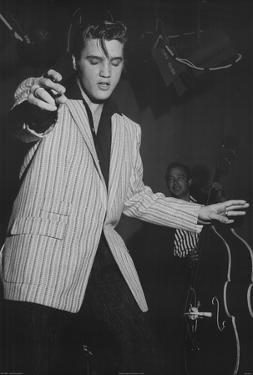 Elvis Presley White Jacket Music Poster Print