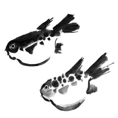 Chinese Painting Of Swellfish On White Background