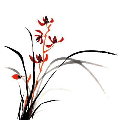 Chinese Traditional Ink Painting Of Orchid On White Background