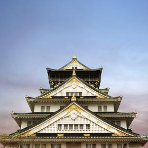 Osaka Castle, One of the Famous Castle in Japan, Asia. by elwynn