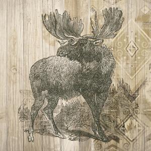 Natural History Lodge VIII by Elyse DeNeige