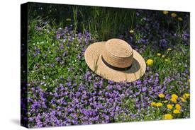 Amish Straw Hat at Spring Time by Elysium Multimedia d13cb98de9cf