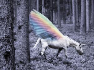 Chasing The Unicorn by Emanuela Carratoni
