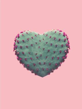 Heart Of Cactus by Emanuela Carratoni
