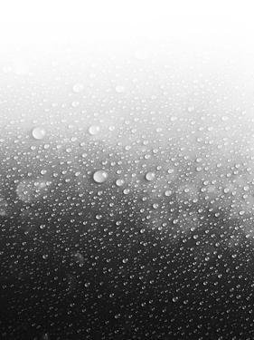 Wet by Emanuela Carratoni