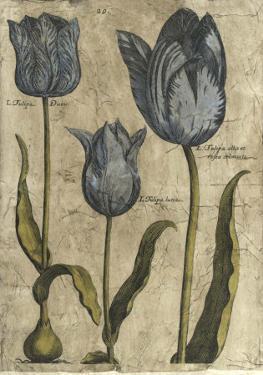 Embellished Elephant Tulips I