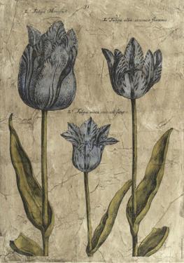 Embellished Elephant Tulips II