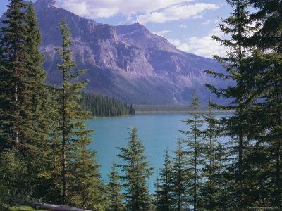 https://imgc.allpostersimages.com/img/posters/emerald-lake-yoho-national-park-unesco-world-heritage-site-british-columbia-b-c-canada_u-L-P2KCFL0.jpg?artPerspective=n