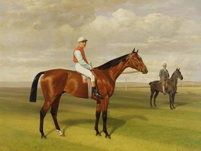 Isinglass', Winner of the 1893 Derby, 1893