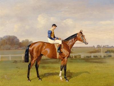 'Spearmint', Winner of the 1906 Derby, 1906