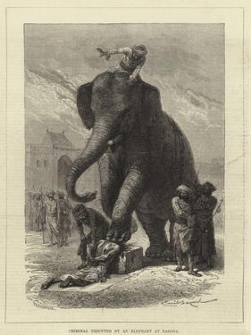 Criminal Executed by an Elephant at Baroda by Emile Antoine Bayard