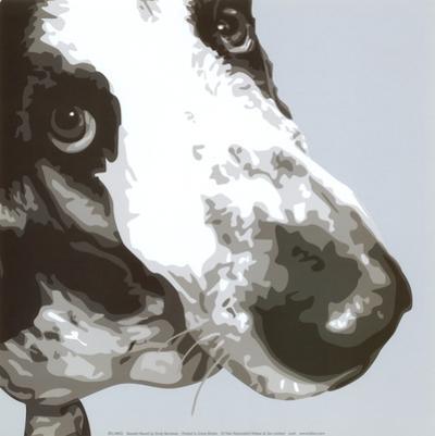 Bassett Hound by Emily Burrowes