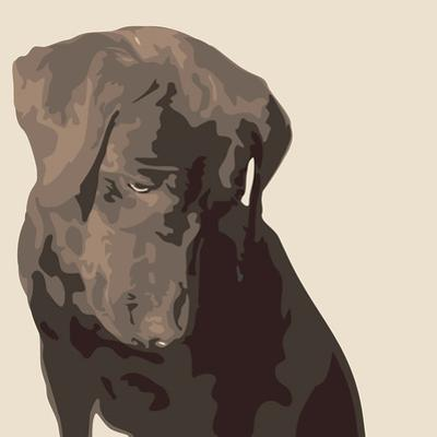Chocolate Labrador by Emily Burrowes