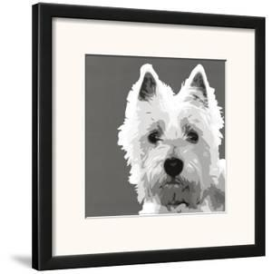 West Highland Terrier by Emily Burrowes